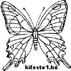 pillang�s 31 kifesto